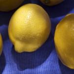 Lemons_(4269013514)